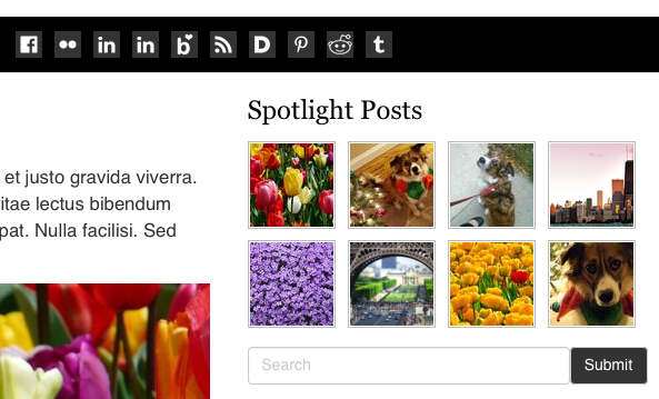 Spotlight Posts grid on blog